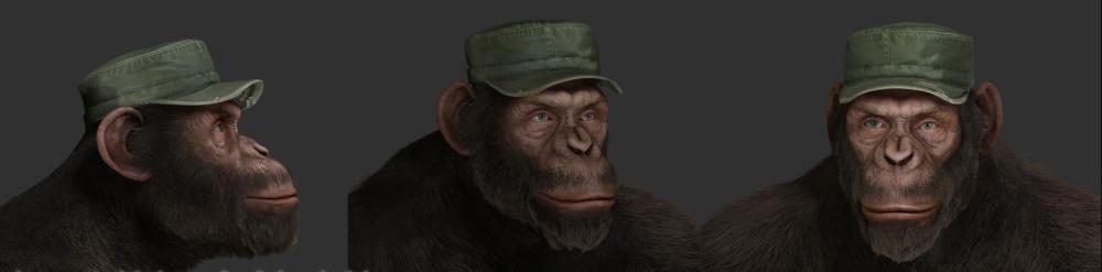 Jonny Buckland chimp