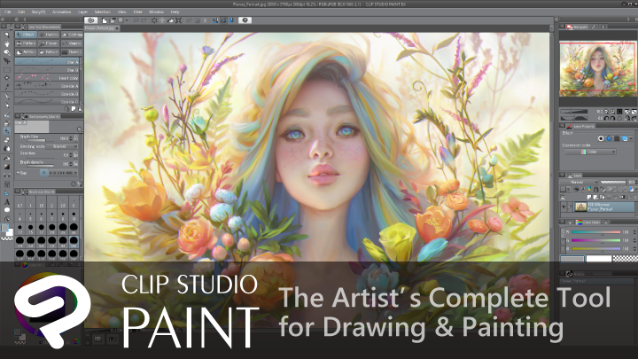 Clip Studio Paint interview graphic software