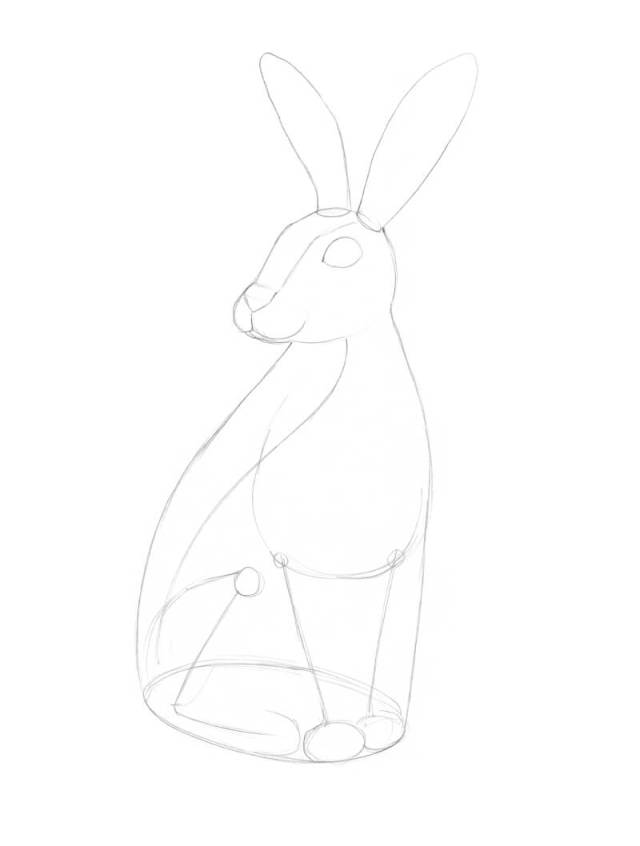 Refining the pencil sketch of the rabbit