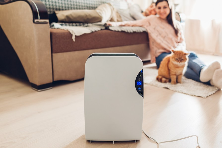 Eliminate Allergens with Air Purifiers for Allergies with HEPA Filters