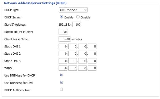 DNS Settings on DD-WRT