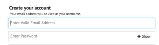 Sumbit IPVanish Email Address