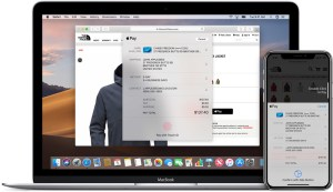 Apple Pay in online