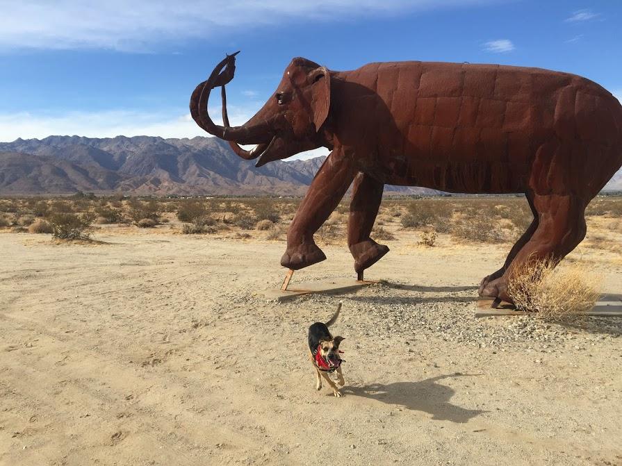 Pre-historic doggo prevails!