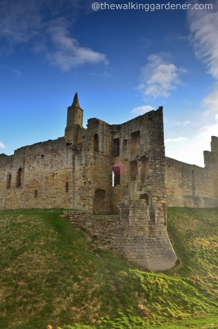 Warkworth Castle (2)