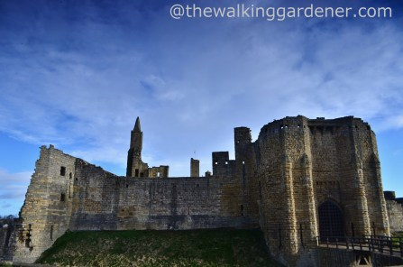 Warkworth Castle (9)