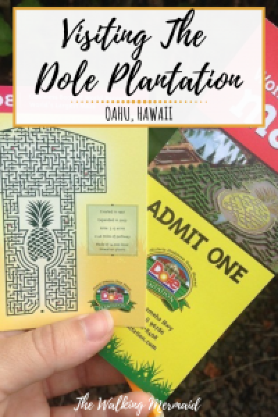 dole plantation tickets maze map overlay pinterest pin image