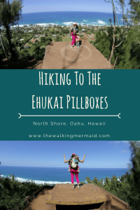 ehukai pillbox