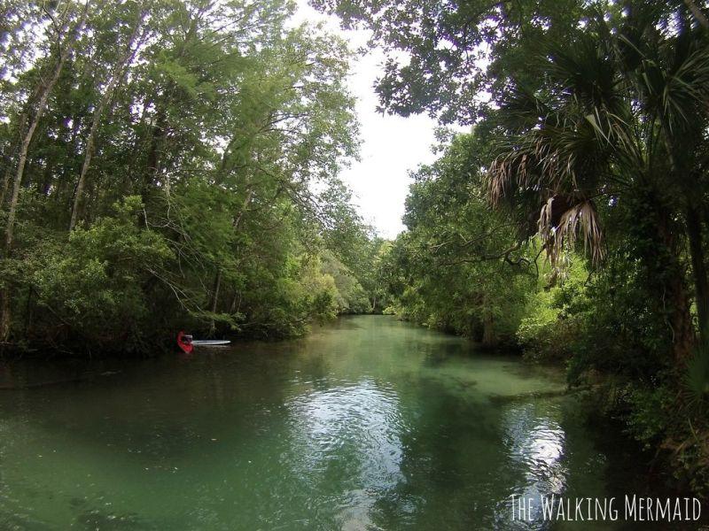 Weeki Wachee, Florida