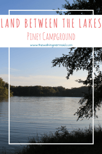 land between the lakes piney campground