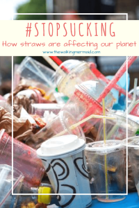 The #STOPSUCKING Challenge And How Straws Are Affecting Our Planet
