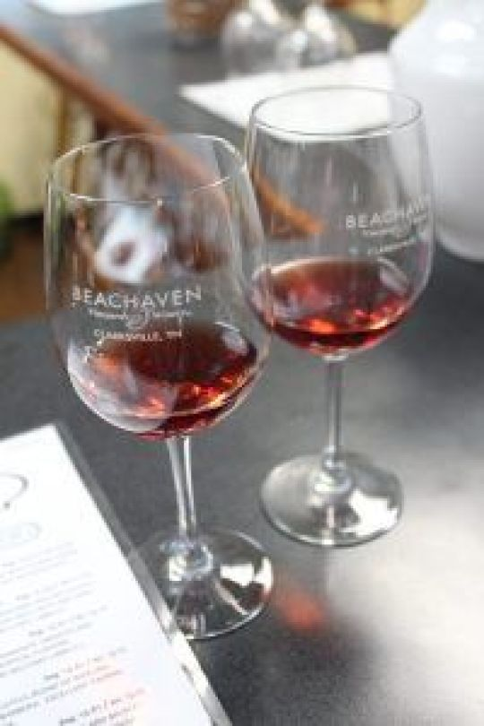 wine tasting at beachaven winery
