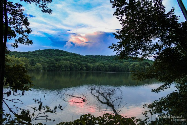 radnor lake nashville tennessee