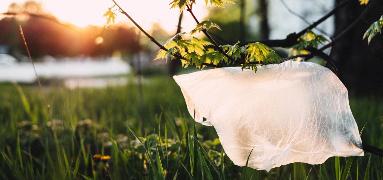 single use plastic found in nature eco friendly plastic bag