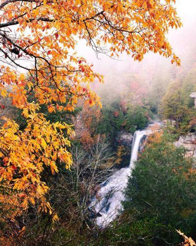 piney creek falls fall creek falls state park tennessee hiking outdoor nature fall waterfalls