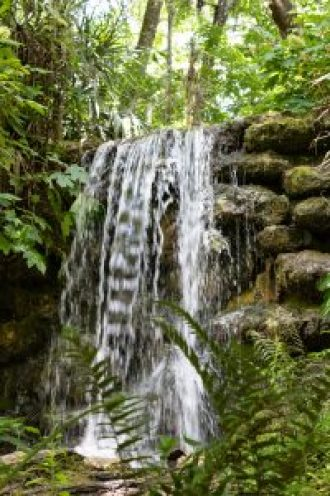 rainbow springs state park florida waterfalls
