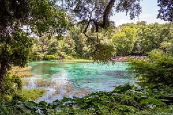 rainbow springs state park florida swimming kayaking paddleboarding