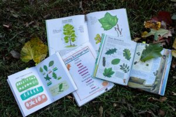 fall kids scavenger hunt and activities nature book fall leaves on books laminated sheet