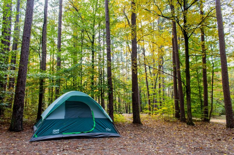 A tent set up and surrounded by fall foliage at Shawnee National Forest in Illinois. Camping Etiquette - Rules for Campers