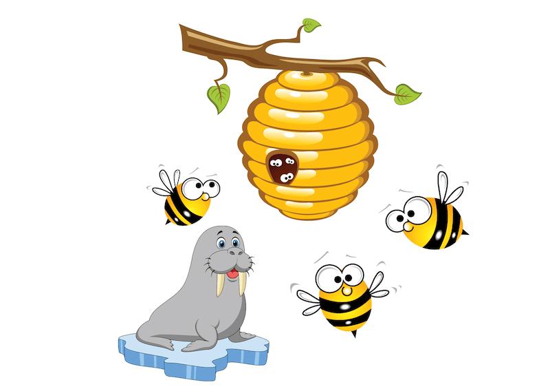 walrus and honeybees