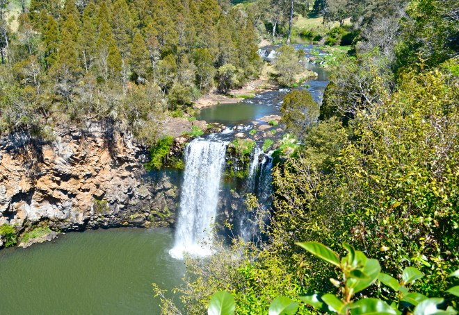 Dangar Falls Waterfall Way NSW