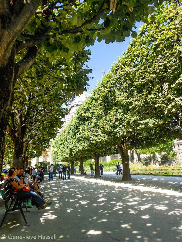 Gardens behind Notre Dame Paris