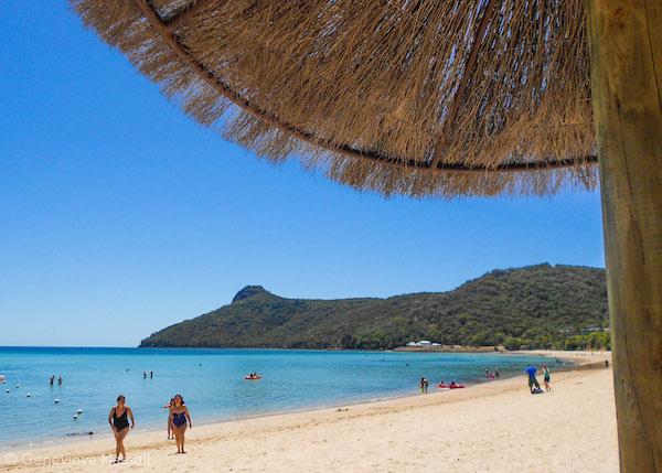 Catseye Beach Hamilton Island Australia