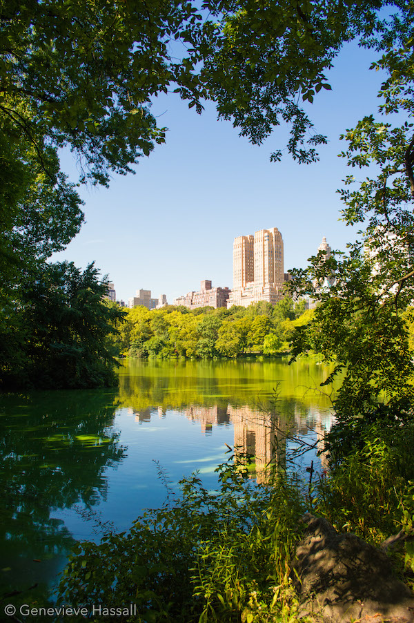 Lake reflections in Central Park NYC