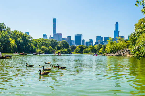 Boating on Central Park Lake NYC