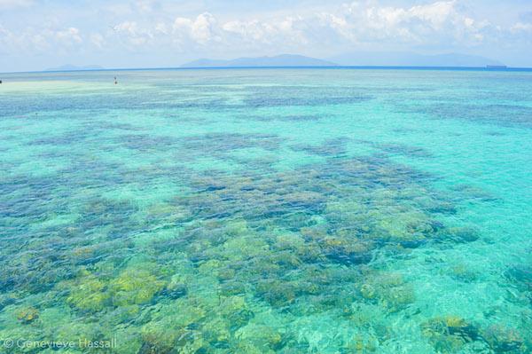 Snorkel Green Island Great Barrier Reef
