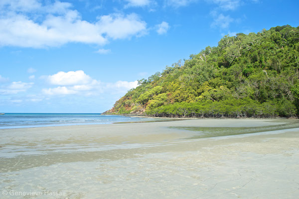 Cape Tribulation Beach Queensland