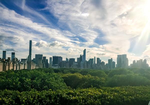 Views of New York City The Met Rooftop Bar