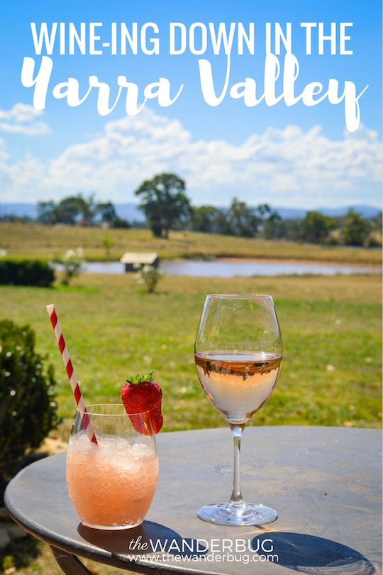 Yarra Valley Day Trip