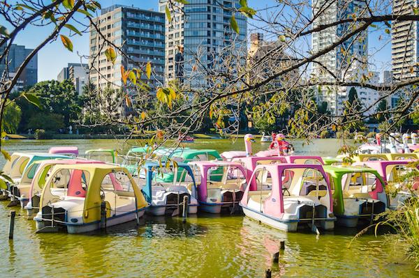 Swan Lake Ueno Park