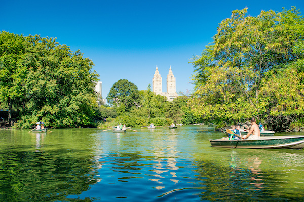 Top experiences in new york city