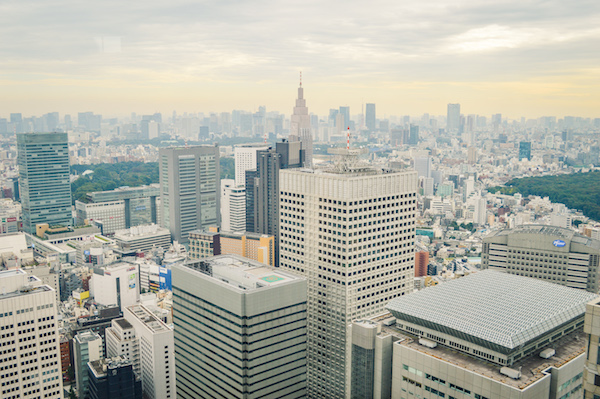View from Tokyo Metro Govt Building-1