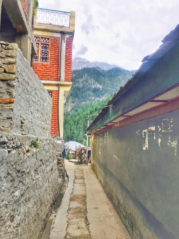 Sangla Valley Kinnaur | Narrow Lane in Sangla valley Himachal Pradesh India