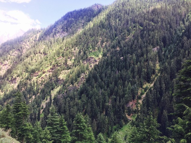 View from Sangla Kanda Himachal Pradesh India