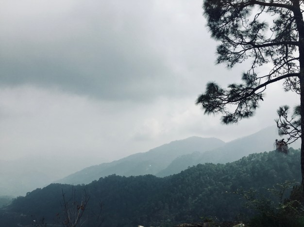 Route to Manki Point Kasauli