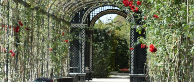 Schonbrunn Palace | Tiergarten Zoo | Vienna | Austria