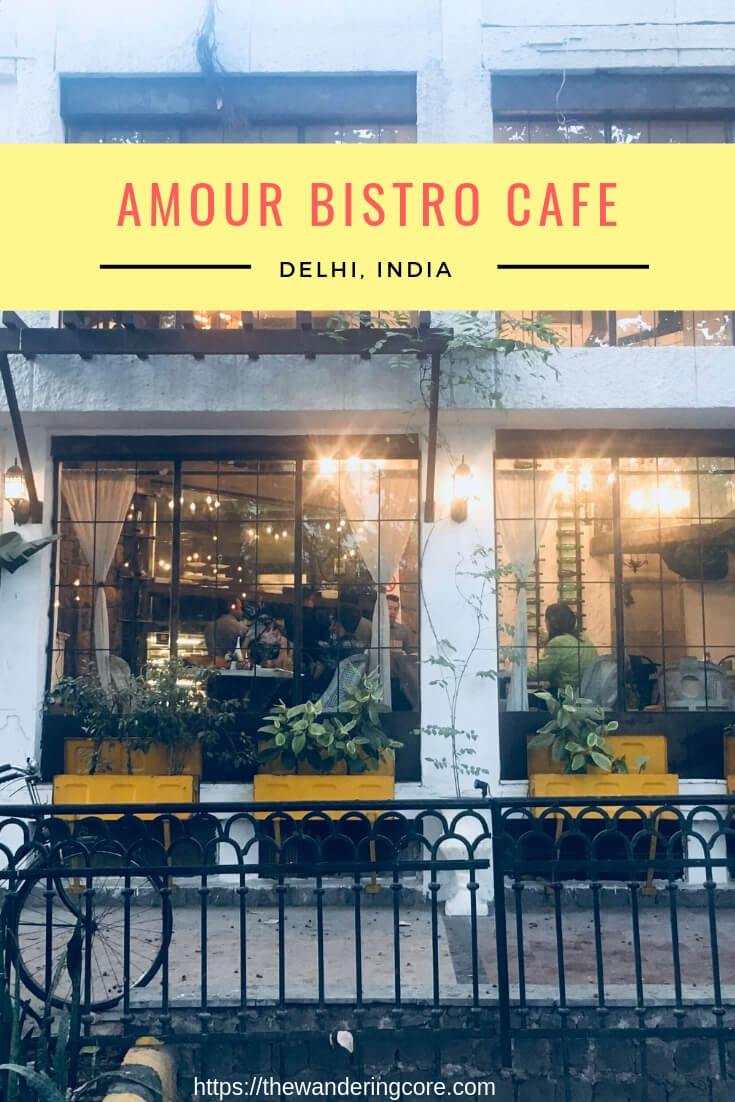 Amour Bistro Delhi India | Amour Bistro | Food Review | Restaurant Review | #delhi #india #review