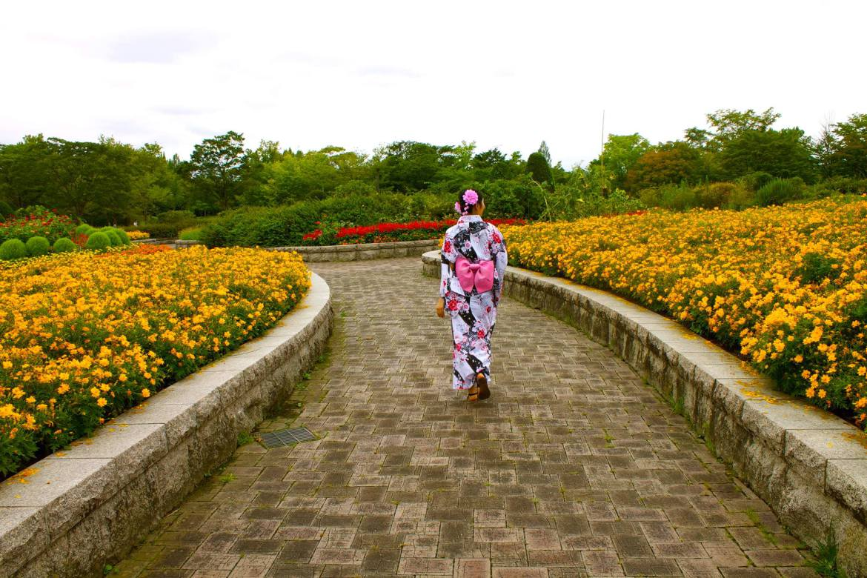 Japan-Sendai-in-Summer