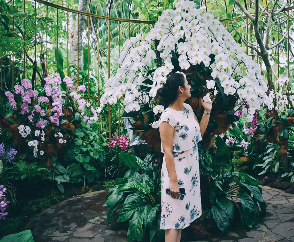 Orchids in Botanical Gardens