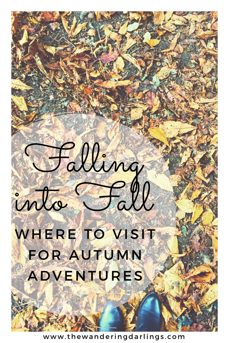 Falling into Fall- Where to visit for Autumn adventures