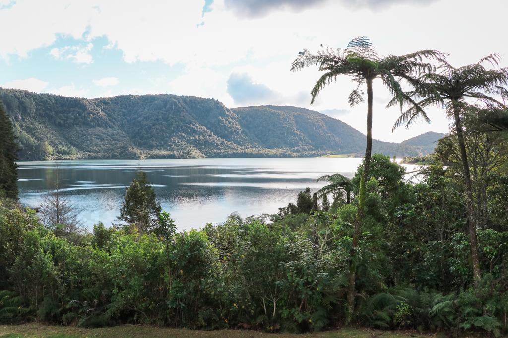 Blue Lake   Lake Tikitapu   Rotorua   Natuur   Noordereiland   Nieuw-Zeeland