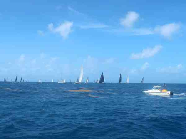 Things to do in Antigua and Barbuda chase the race