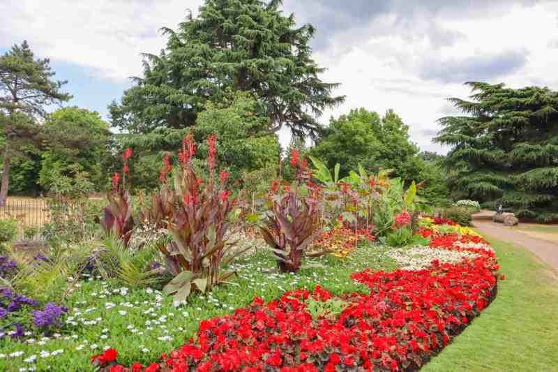 Greenwich London things to do Flower Garden