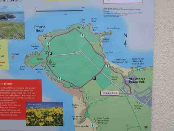 things to do near Padstow Cornwall trevose head walk