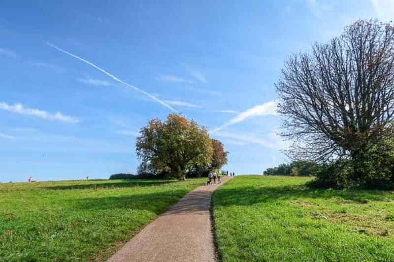 Autumn Walks in London, Hampstead Heath in Autumn