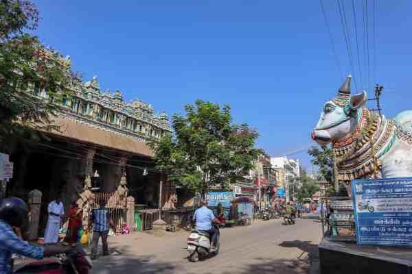 Madurai Streets Nandi